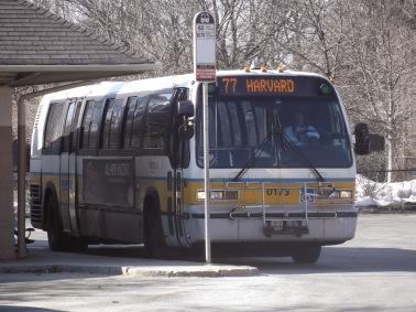 77 bus