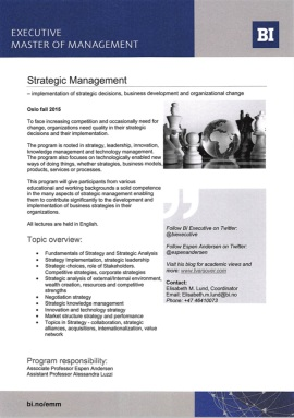 Flyer Strategic Management